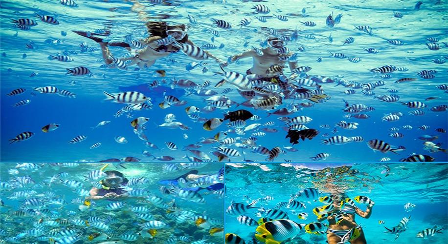 bawah laut pulau tidung jakarta