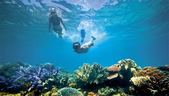 snorkling wisata pulau tidung (2)