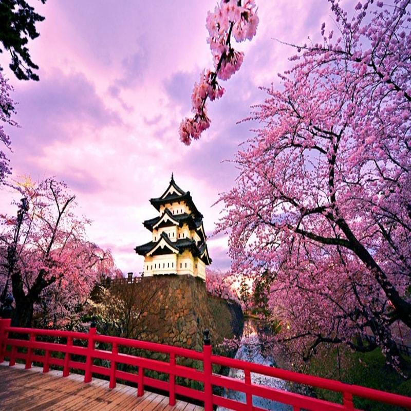 Trip Tour Jepang